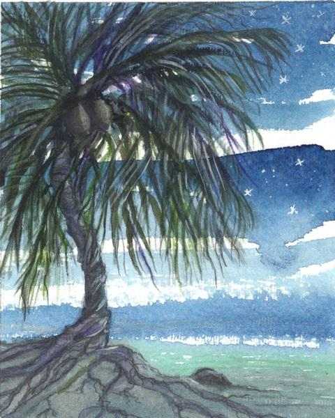 A Coconut Christmas in Islamorada, Florida (Ingrid Brooks)