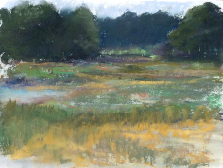 Marshes Study 1