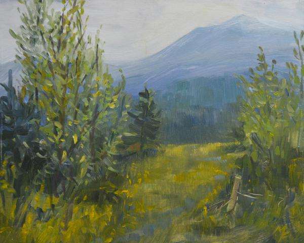 Marje Fletcher - View towards Saranac Lake-s